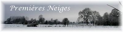 Leonbergs dans la neige