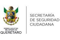 ENLACE CON LA SRIA DE SEGURIDAD CIUDADANA