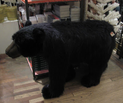 Grizzley Bear at ABC Carpets