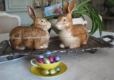 Corey's bunnies