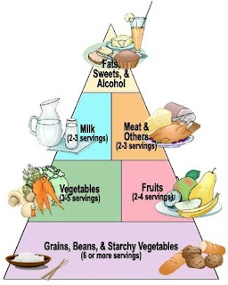 Food Pyramid and Importance of Minerals