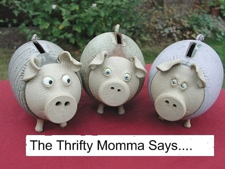 The Thrifty Momma