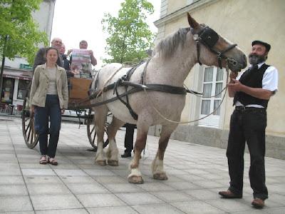 http://3.bp.blogspot.com/_HohVA2eKla0/SMO02ZOMVjI/AAAAAAAAAaI/LH3ueByDzq4/s400/cheval-breton.jpg