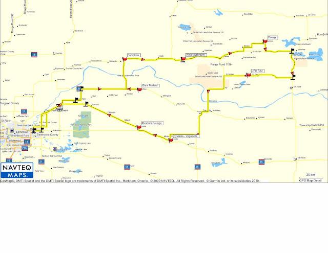 Navteo Maps