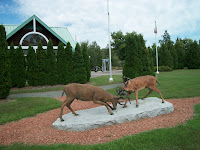 Deer Statues at Visitor area
