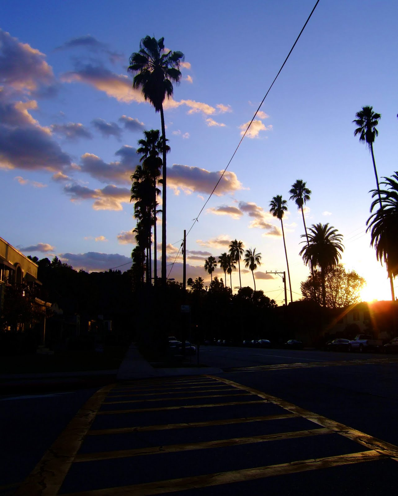 Sunset Crosswalk With Palms And