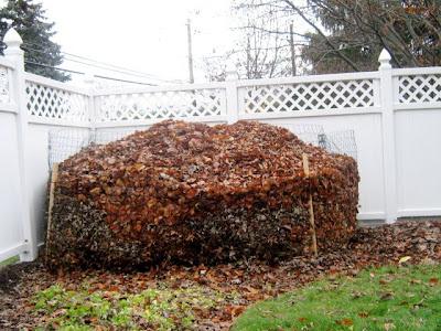 leaf bin