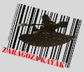 Ir a Zaragoza Kayak