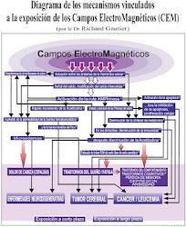 DIAGRAMA DE EFECTOS POR EXPOSICION A C.E.M