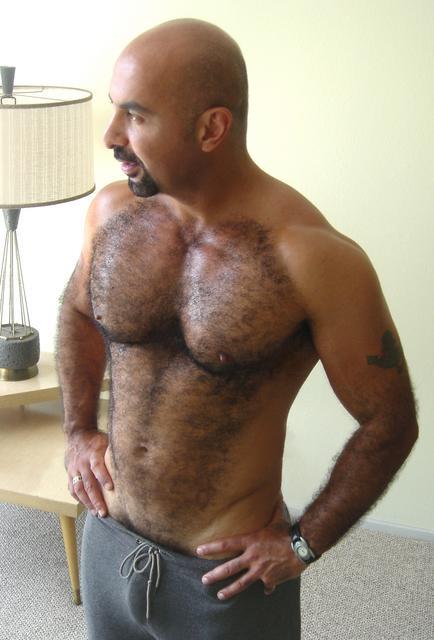 gay bear arabs photos Adhere Poor