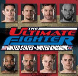Watch The Ultimate Fighter: United States vs. United Kingdom Finale online