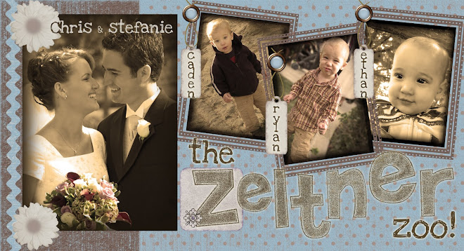 The Zeltner Zoo!
