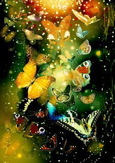 Poze cu fluturi frumosi