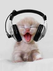 *Adoro este gatinho !!! *