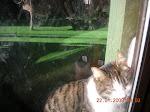 Mitzi wants IN