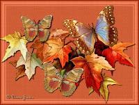 Las mariposas...