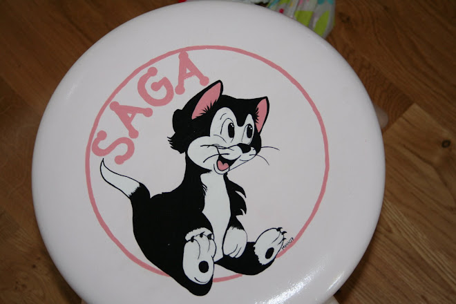 Figaro krakk malt til Saga