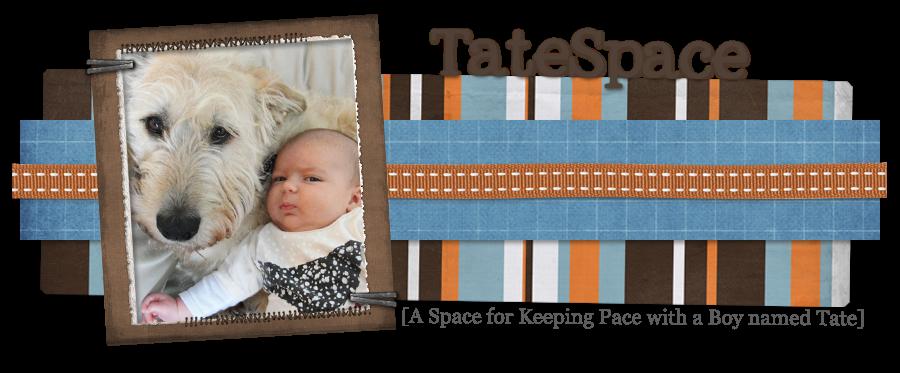 TateSpace
