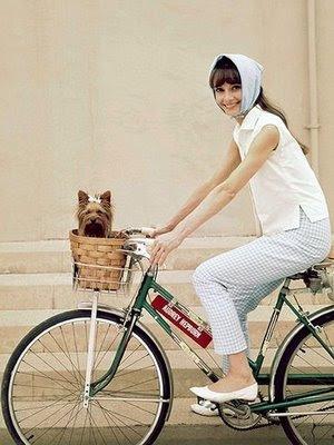 http://3.bp.blogspot.com/_HzkYNZ3pcpk/SwJkHTHNEVI/AAAAAAAABKk/x3rEBs6RJdk/s400/bike1.JPG