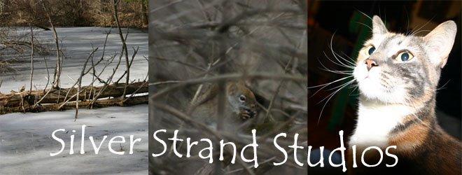 Silver Strand Studios