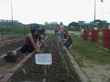 Actividad de campo, Escuela Popular de Agroecologia