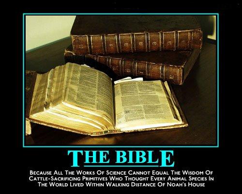 [biblenoah+mcs.jpg]
