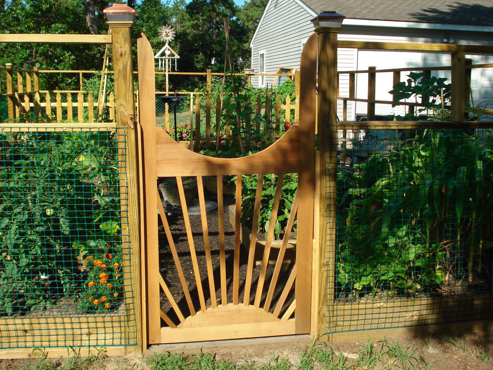 Debbie\'s Potager: Why my garden is a Potager
