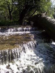 Ontario Falls in July