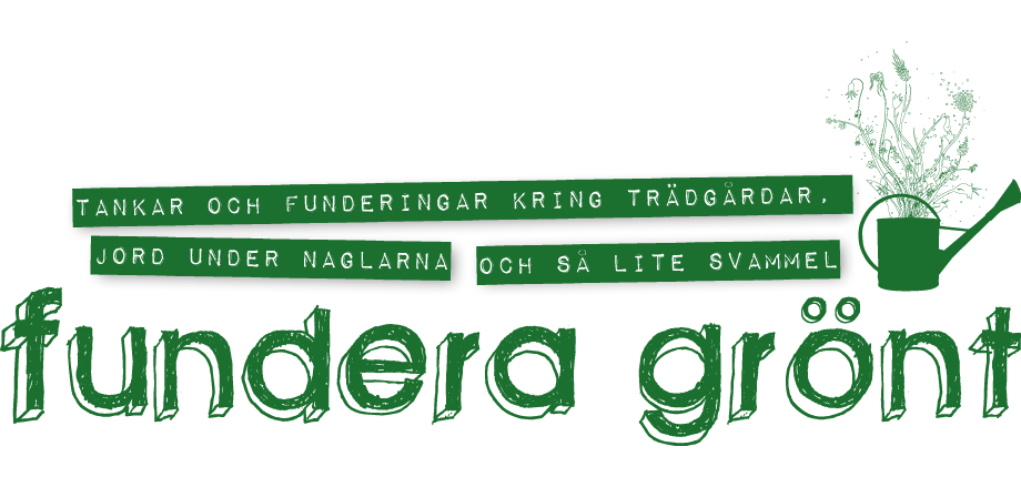 Fundera grnt