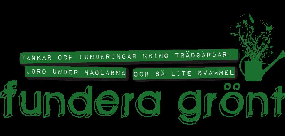 Fundera grönt