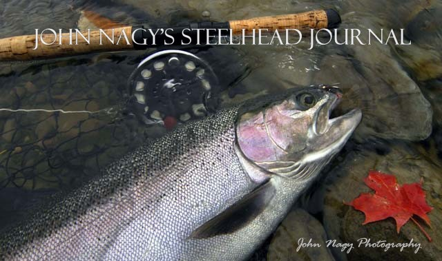 John Nagy&#39;s Steelhead Journal