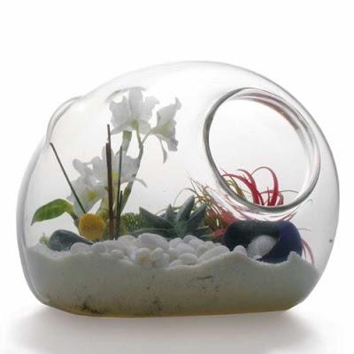 Terrarium: Garden Art In Glass