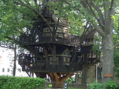 Insane Tree Houses insane tree houses ~ somethin insane