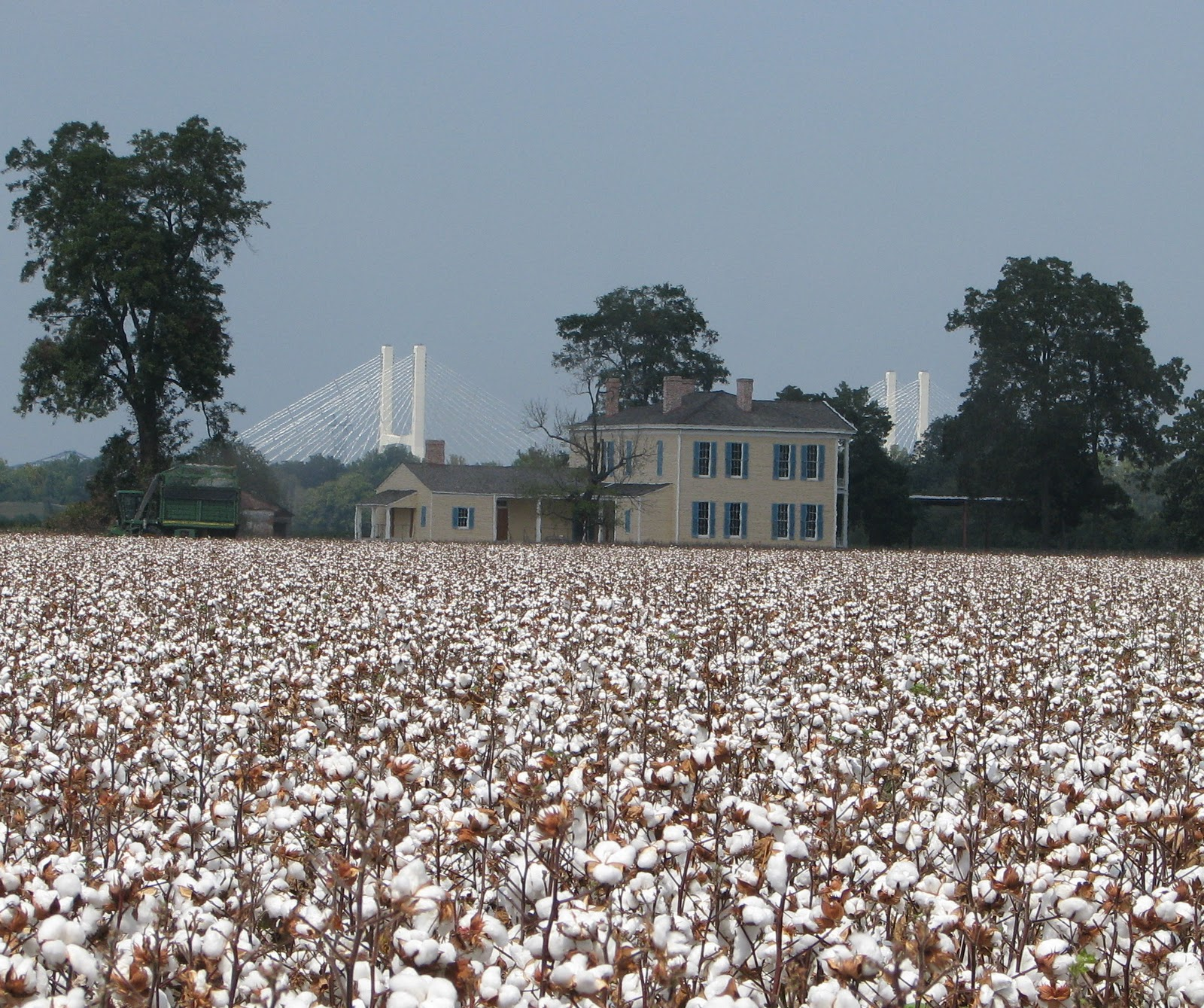 Lakeport Plantation: Another Season of Cotton