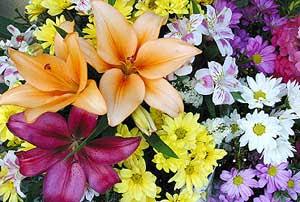 Descubrir el placer de cocinar con flores