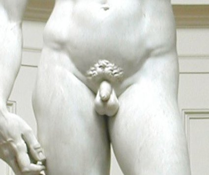 Michelangelos_David.jpg