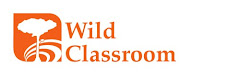 A new philosophy in Outdoor Education