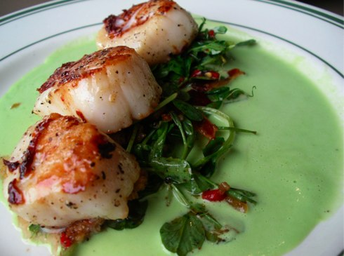 with prosciutto and lime bacon wrapped scallops with spicy cilantro ...