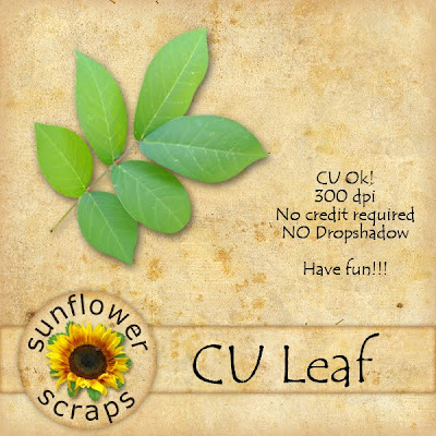 http://feedproxy.google.com/~r/SunflowerScraps/~3/5gbQzanVzWI/freebie-time-cu-leaves.html