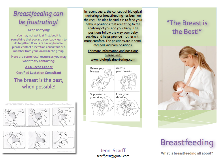 My americorps adventure new and improved breastfeeding for Breastfeeding brochure templates