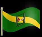 Bandera de la Localidad