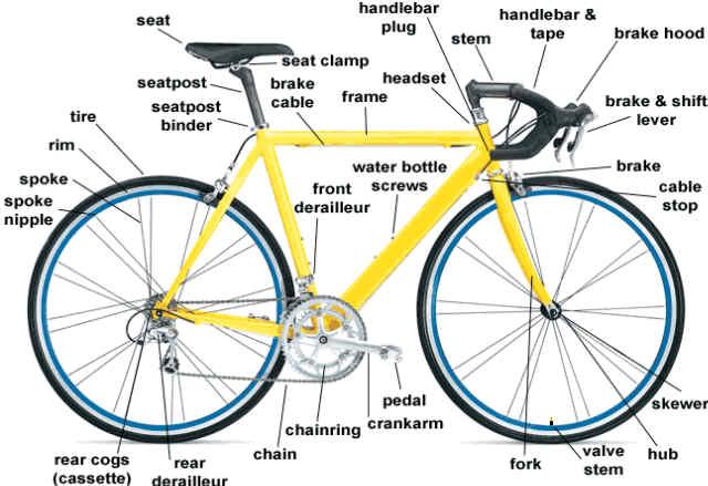 Bicycle anatomy diagram