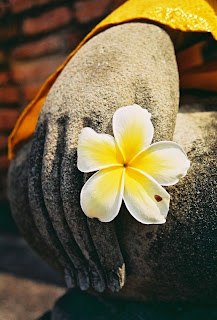 Buddha Hand and Flower