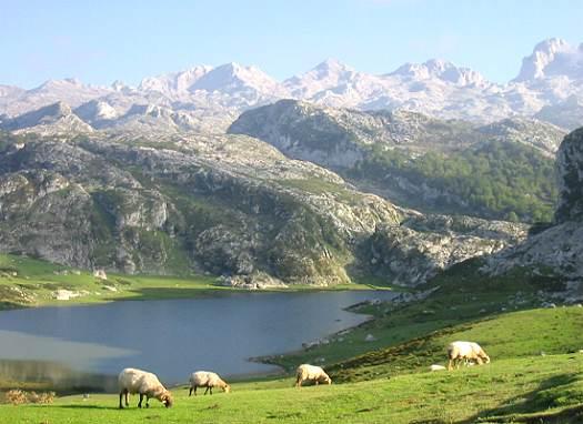 Picos - [Votação] Picos da Europa Picos-de-europa