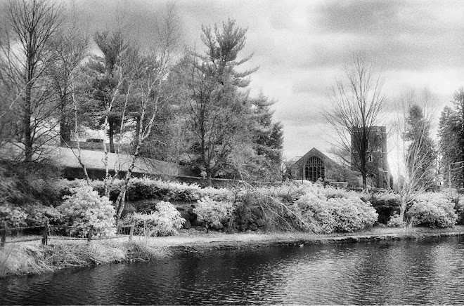 Duck Pond, Winchester, Mass. 2