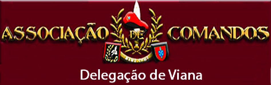 Comandos do Distrito de Viana do Castelo