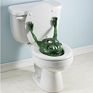 [toilet]