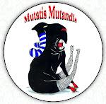 Mutatis Mutandis