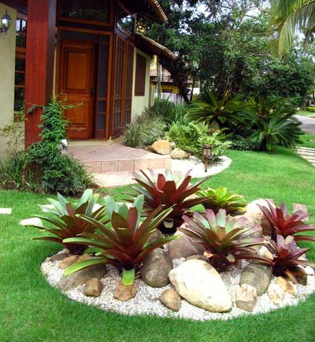 plantas para jardim muito sol:Dr. Planta: Bromelias Otimas Para Dentro e Fora de Casa.