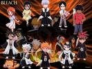 Bleach Group Picture